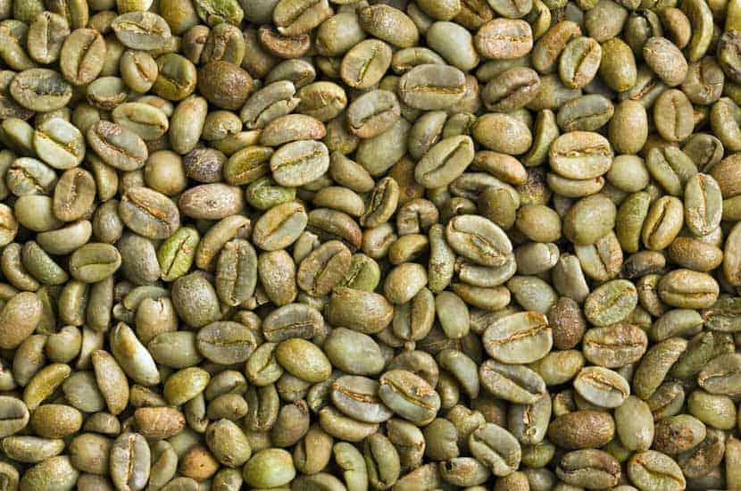 Idealica - Componente naturale #1 Estratto di caffè verde