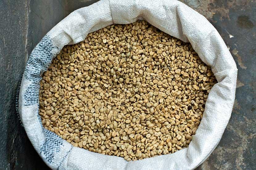 L'acido clorogenico è presente nel caffè verde non torrefatto