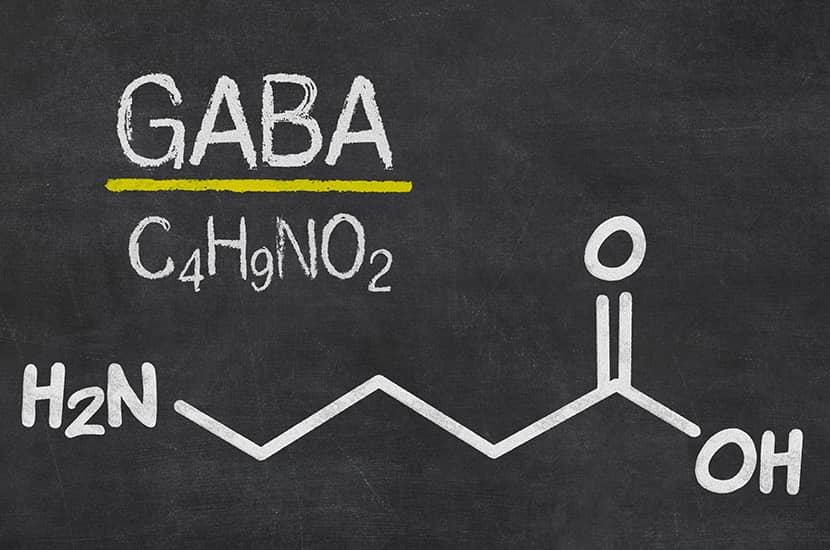 Gli studi dimostrano che GABA può essere in grado di aumentare la massa muscolare