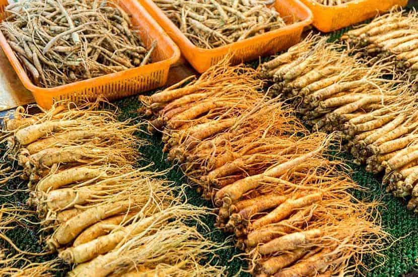 Il ginseng è stato usato per migliaia di anni dalla medicina tradizionale cinese
