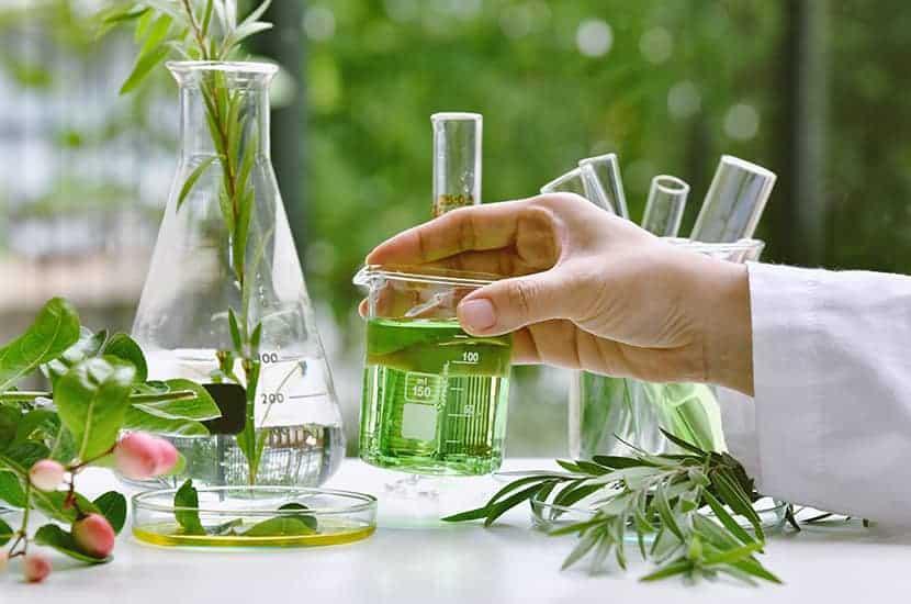 Fungalor crema formula contiene climbazolo, farnesolo, vitamina E e oli essenziali