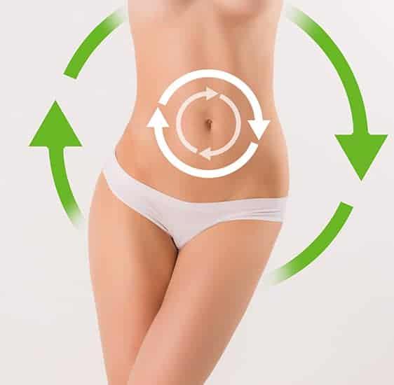 I componenti di Green Barley Plus agiscono direttamente sul metabolismo dei grassi