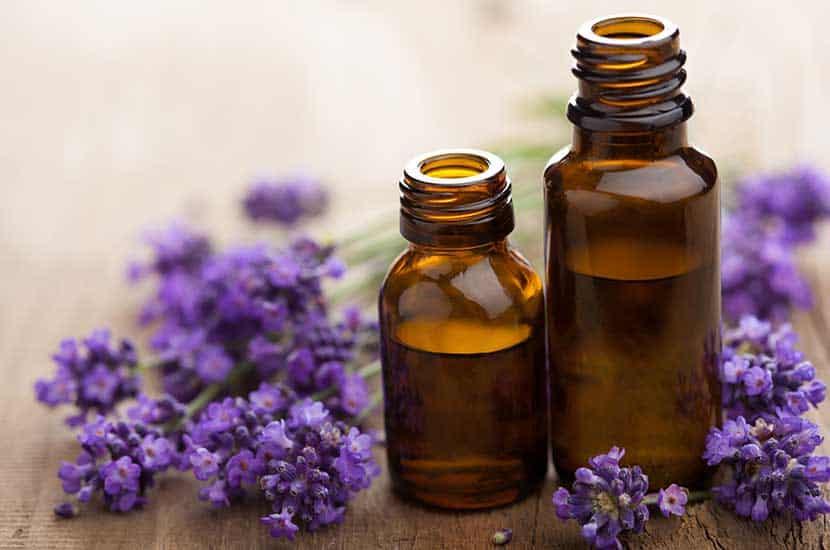 Gli oli essenziali hanno importanti proprietà antimicotiche