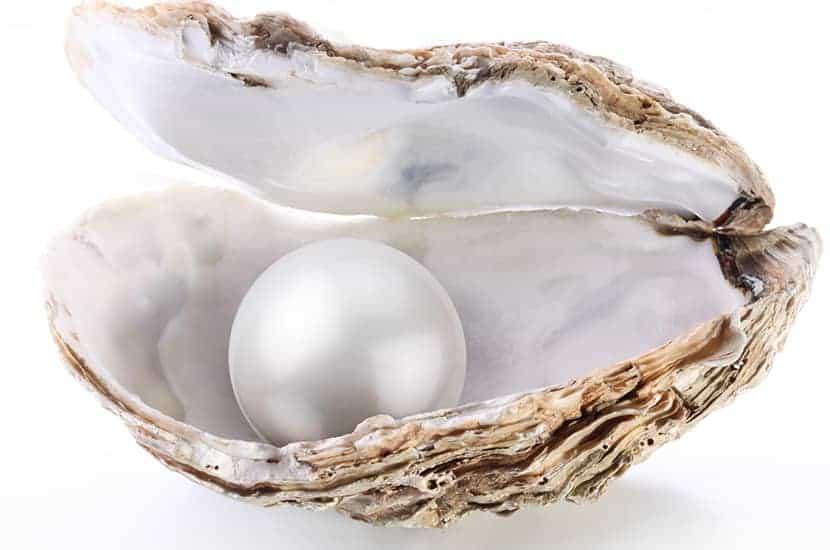 La polvere di perle si ottiene dalla macinazione delle perle fino ad ottenere una polvere fine